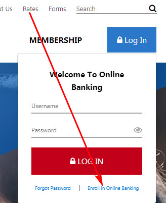 American Airlines Credit Union internet banking